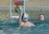 Internationales U11 Wasserballturnier
